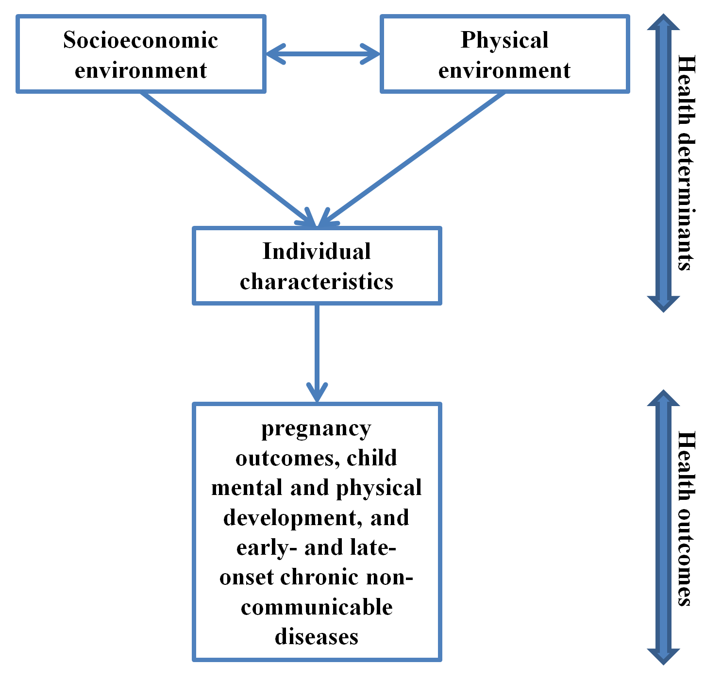Health determinants and outcomes covered by the project